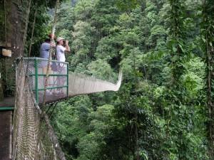 Baumkronenpfad Costa Rica